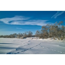 SDIM0380_Winter