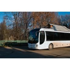 SDIM0491_Buses