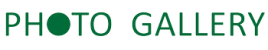 Geraniumm Photo Galleryr Store
