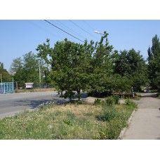 DSC02474._Taganrog
