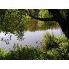 P1010038_River