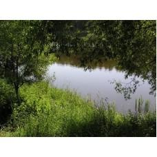 P1010039_River